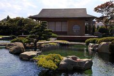 Startseite - Wasser Garten Kirchner