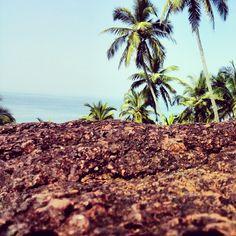 This is so Goa <3  Image credits: Shravan Parker