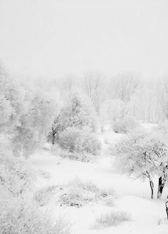 paysage blanc http://vitrierparis3.urgence-plombier-electricien.fr