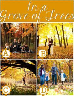 Fall Photo Location GROVE