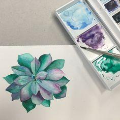 Watercolor succulent plant | franciscamdfreitas | VSCO