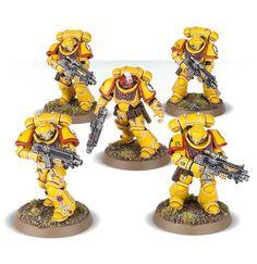 Imperial Fists Intercessor squad