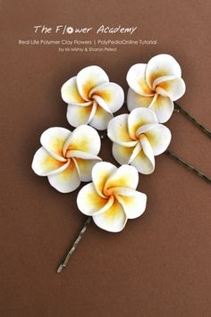 Polymer Clay Flower Tutorials - Frangipani (plumeria) bobby pins project--using as idea board Polymer Clay Flowers, Ceramic Flowers, Fimo Clay, Polymer Clay Charms, Polymer Clay Projects, Polymer Clay Creations, Polymer Clay Art, Clay Crafts, Polymer Clay Jewelry