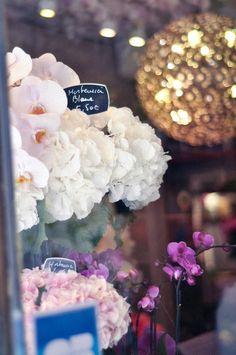 glamorous flowers in Paris shop window