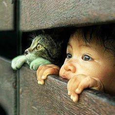 Cat & child peering through fence