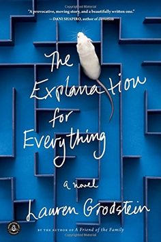 The Explanation for Everything: A Novel by Lauren Grodstein http://www.amazon.com/dp/1616203811/ref=cm_sw_r_pi_dp_bvq7wb02BB387