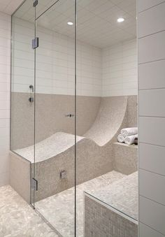A reclining steam shower - way too big for the house -- unless we take 30 sq feet out of son's room... Hmmm