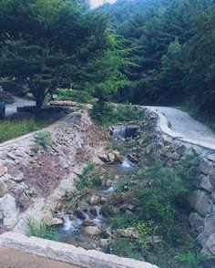 Stream flowing to somewhere ... .. . #green #nature #water #stream #colourful #beauty #inthewild #groen #natuur #water #stroom #schoonheid #inhetwild #instagood #ergens #inKorealand #nofilter #노필터 #itsalie #maybenot #stiekemkleinbtjedit #w3lcometoELlife #journey #mylifoe  #bym3 #3mmaann #EL