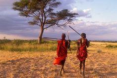 Two Maasai Morans Walking with Spears at Sunset, Amboseli National Park, Kenya at FramedArt.com