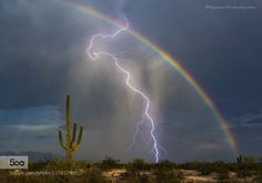Rainbow Lightning by saguaropictures  Arizona Lightning Marana Tucson desert lightning bolt lightning strike monsoon rainbow saguaro storm