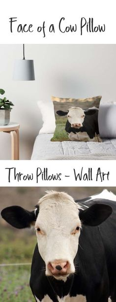 A throw pillow with the face of a Holstein Cow. Buy it here: https://www.redbubble.com/people/rhamm/works/10766424-front-of-a-cow?asc=u&grid_pos=315&p=throw-pillow&rbs=fa0da315-6199-43e7-95cc-c12fc04f0518&ref=artist_shop_grid