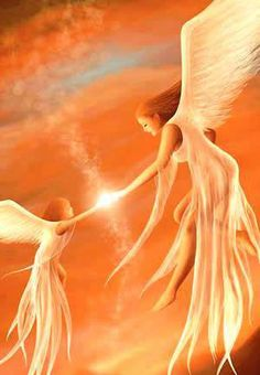 Spiritual Guides are always with us all including animals, trees all living Angels Among Us, Angels And Demons, I Believe In Angels, Angel Pictures, Mystique, Angels In Heaven, Heavenly Angels, Guardian Angels, Angel Art