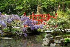 De Japanse tuin van Clingendael