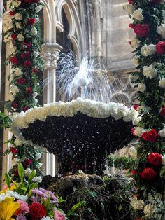 """""""L'ou com balla"""". Claustre de la Catedral, Font de Sant Jordi ∞ Barcelona."""