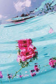 under water blossom
