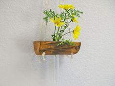 Vase,Treibholz, Blumen,Hängevase,natur,Blumenvase von Schlueter-Home-Design auf DaWanda.com