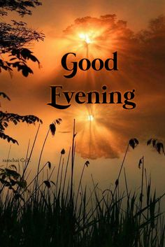 Good Evening Greetings, Evening Quotes, Good Morning Quotes, Action Movies, Good Night, Love Quotes, Finals, Good Afternoon, Good Night Greetings