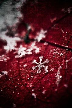 Snowflakes on red Envers du Decor