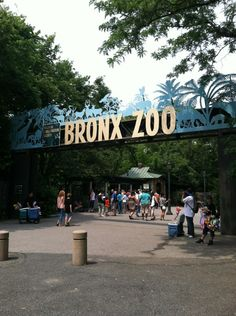 bronx zoo memorial day weekend 2015