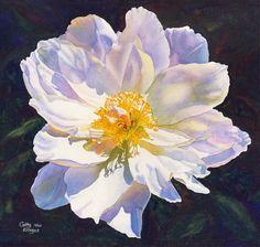 White Peony Art Acquerello pittura stampa da di CathyHillegas