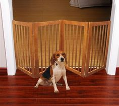 "72"" Wood Pet Gate 4 Panels Pet Gate, Doorway, Gates, In The Heights, Make It Simple, Wood, Fence, Animals, Elegant"