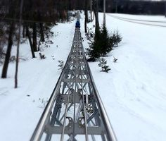 The Mountain Coaster is fun year-round! #MyCamelback