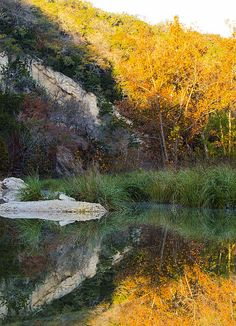 Autumn Reflections in Lost Maples Texas State Park