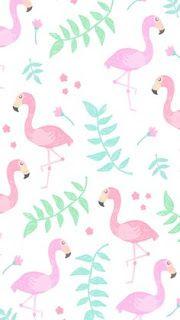 Wallpaper iphone flamingo wallpaper, wallpaper iphone cute, wallpaper for your phone, girl wallpaper Unicornios Wallpaper, Cute Wallpaper For Phone, Cute Wallpaper Backgrounds, Funny Wallpapers, Wallpaper Downloads, Cute Backgrounds For Phones, Tumblr Backgrounds, Pink Flamingo Wallpaper, Pink Flamingos