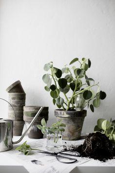 En inredningsblogg om inspiration för inredning & design - Hemtrender Go Green, Planter Pots, Vase, Inspiration, Design, Gardens, Home Decor, Biblical Inspiration, Decoration Home
