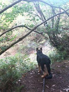 Hiking ...