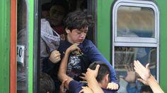 Guerra en Siria: ¿Quieres ayudar a los refugiados que están llegando a Europa? Así puedes hacerlo. Noticias de Mundo. El número no para de aumentar, y la ayuda es esencial. Cruz Roja, ACNUR, Médicos Sin Fronteras, Moas o Amazon han puesto en marcha campañas. Explicamos cómo donar y en cuáles son las web