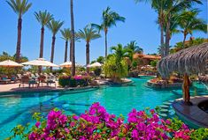 Sheraton Hacienda del Mar Golf & Spa Resort, Los Cabos - Delfines Pool in the morning