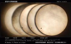 国立天文台のHP -   2004年6月8日の「金星の太陽面通過」の写真
