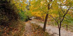 Paseos en otoño por el entorno de Alcoy