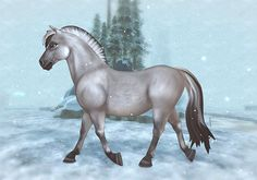star stable horse