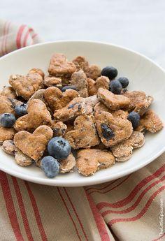 Blueberry Oatmeal Dog Treats