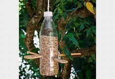 Tratador de pássaros