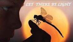 In this post, we'll take a look at the Dragonfly. A very powerful little being that has always reminded me of faeries. The dragonfly has always played a big rol Mommy Daughter Dates, Deep Cleansing Facial, Ear Candling, Wayne Dyer, Change Is Good, Faeries, Butterfly, The Incredibles, Nature