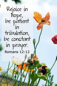 """Rejoice in hope, be patient in tribulation, be constant in prayer."" Romans 12:12"