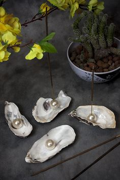 Diy pearl bead in shell as incense holder. Diy Incense Holder, Art Studio Design, Fountain Design, Cute Crafts, Diy Crafts, Seashell Crafts, Nature Crafts, Air Dry Clay, Diy Clay