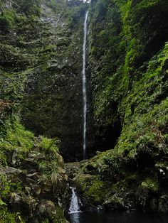 Caldeirão Verde, Madeira Island.   #Portugal. Photo by @Ucronio (Nabucodonosor Perez)