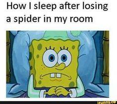 spongebob, meme, after, losing, spider