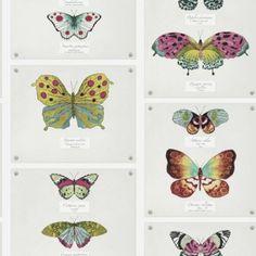 Papilio - Multi : Wallpaper and wallcoverings from Holden Decor Ltd. Pop Art Wallpaper, Embossed Wallpaper, Wallpaper Panels, Animal Wallpaper, Fabric Wallpaper, Pattern Wallpaper, Tile Panels, Orangutan