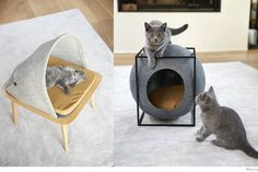 Classy Cat Beds from Meyou | Do Shop
