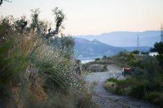 Summer in Spain #spain #espana #mountains #catalonia #barcelona #nikon ingephotography.nl