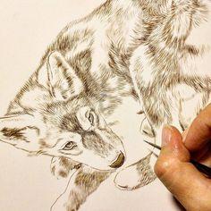 "Wolf painting in progress 8"" x 10"" watercolor on board Rebecca Latham  #wildlife #watercolor #art #animals #painting #miniature #nofilter #artist #miniatureart #realism #animallovers #wolf #canine #timberwolves #puppy #cub #workinprogress"