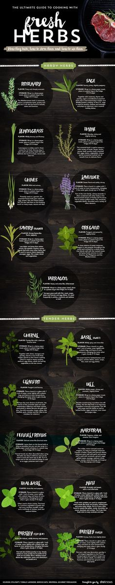 New to using fresh herbs? This handy infographic will show you everything you need to know.