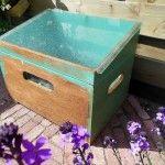 DIY: free mini greenhouse for dummies
