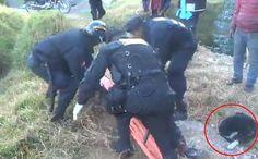 Luego de que un hombre sin hogar fue apuñalado yquedóinconsciente durante horas, su fiel perro...