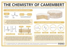 Compound Interest - The Chemistry of Camembert